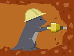 Moles Pest Control