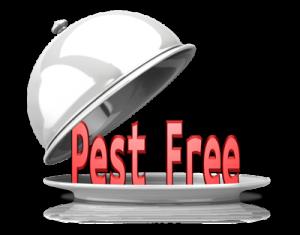 Best Commercial Pest Control