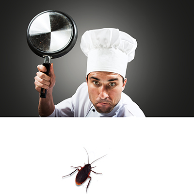 Best Commercial Pest Control Strategies