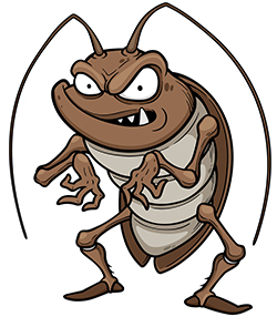 Cockroach Facts Beyond Belief