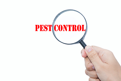Winter Pest Inspection Checklist