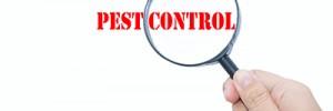 Winter Pest Inspection Checklist