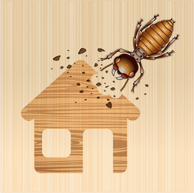 Termites In Your Home? How Do You Know?