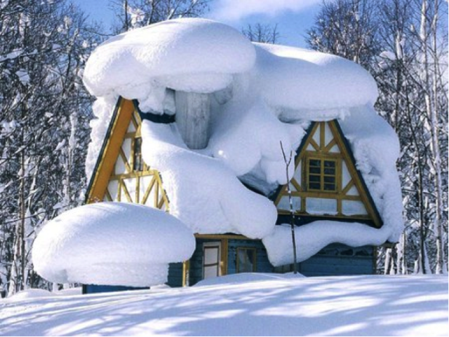 Indoor Home Improvement Projects for Winter